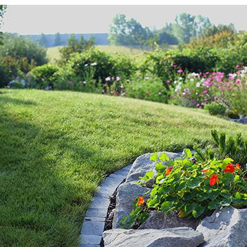 cr ation de jardins tom pousse paysage. Black Bedroom Furniture Sets. Home Design Ideas